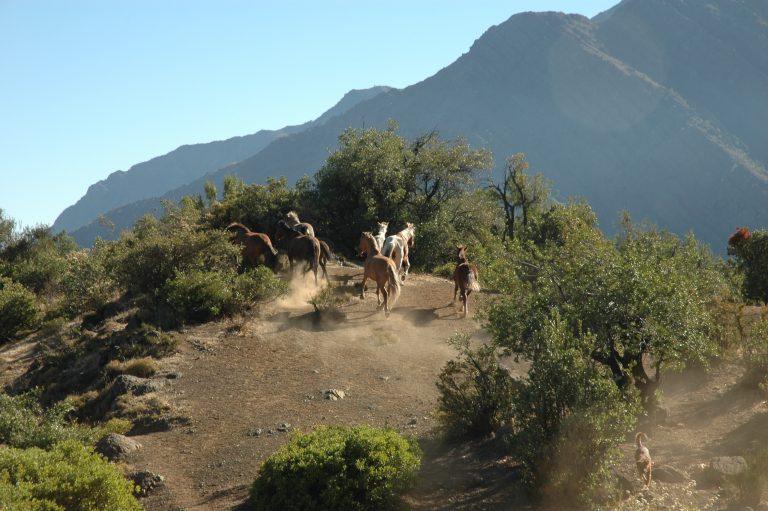 Around the Refugio